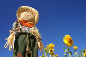 Scarecrow standing watch over the field