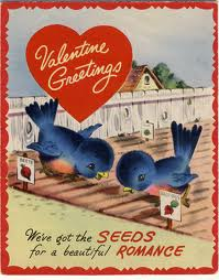 Seeds for Love